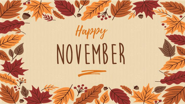 November Bingo Programs