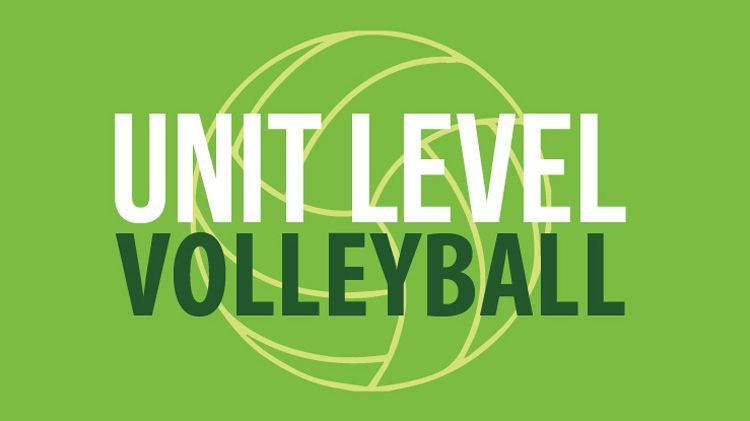 Registration: 2020 Unit-Level Volleyball